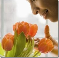 article-page-main_ehow_images_a07_73_2i_cut-tulips-800x800