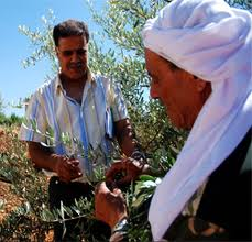Lebanese farmers meet to discuss sector's challenges