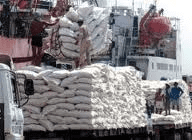 "Rice export: many businesses ""give up the games"""