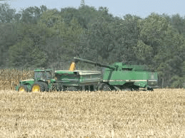 ND small grain crops developing quickly