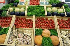 Vegetable exports likely to reach USD 500 million this year