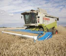 Tight stocks support grain prices